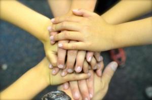 teamwork 5
