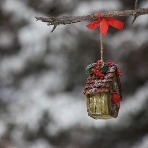 ... happy holidays ...!!!