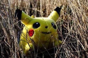 Gameplay_of_Pokemon_Go